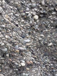 molasové sedimenty