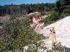 Silně rozbrázděný terén po někdejší těžbě bauxitu (Topira)