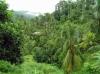 Typická krajina s vysokým stupněm zakrytosti terénu