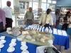 Modelové produkty v expozici muzea MGD v Kingstonu