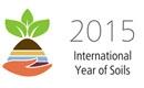 Mezinárodní rok půdy